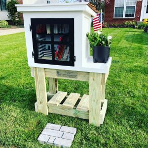 Little Free Library design